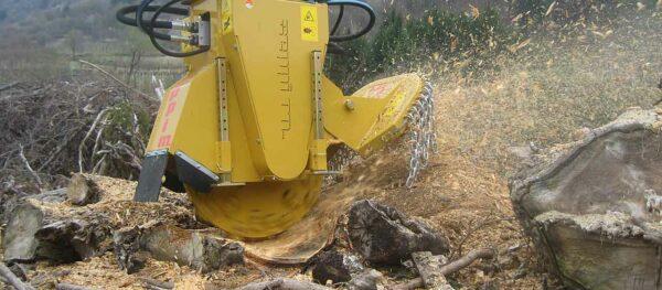 Baumstumpffräsen Seppi M mit 2 Motoren